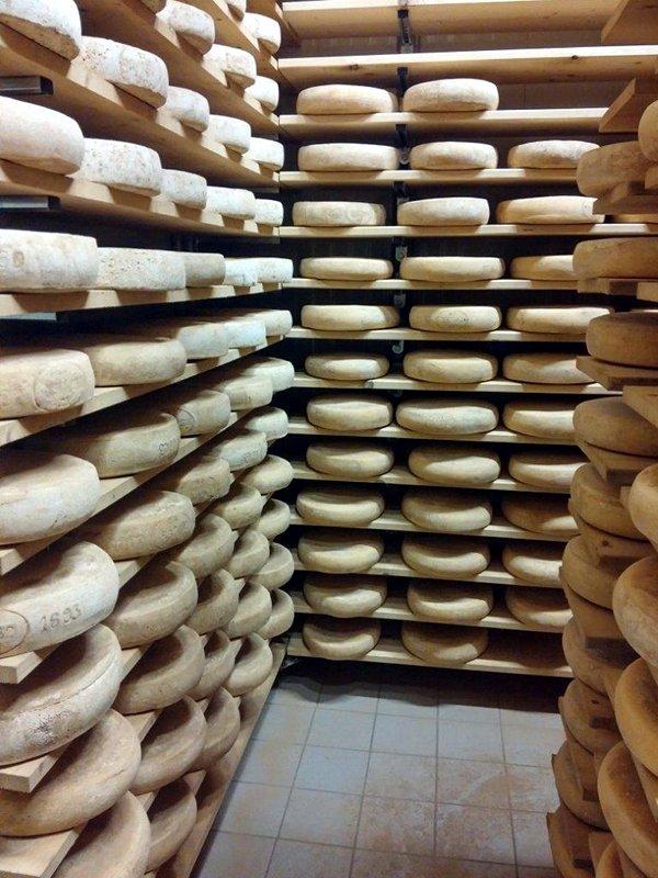 formaggio casel bellunese