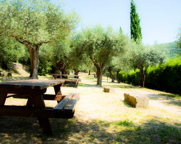 il roncolo campeggio di Perugia